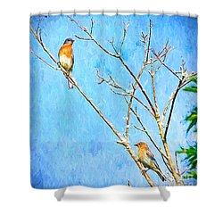 Eastern Bluebird Couple Shower Curtain