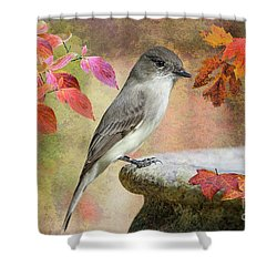 Eastern Phoebe In Autumn Shower Curtain by Bonnie Barry