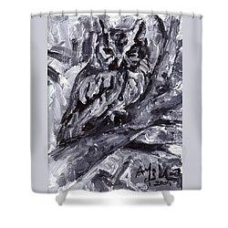 Eastern Screech-owl Shower Curtain