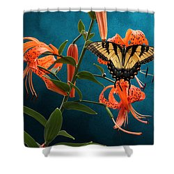 Eastern Tiger Swallowtail Butterfly On Orange Tiger Lily Shower Curtain