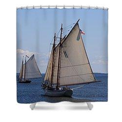 Eastward Shower Curtain