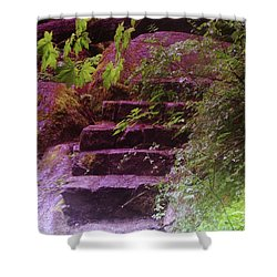 Easy Steps  Shower Curtain by Jeff Swan