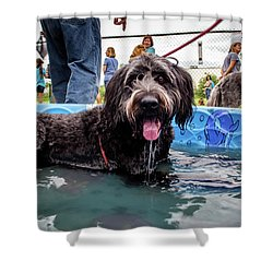 Ebhs 65 Shower Curtain