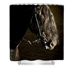 Ebony Beauty Shower Curtain by Wes and Dotty Weber