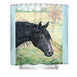 Ebony Shower Curtain