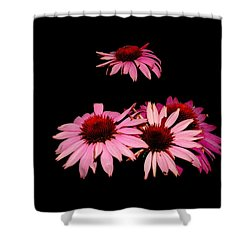 Echinacea Pop Shower Curtain
