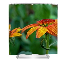 Echinacea Side View Shower Curtain