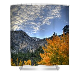 Echo Road Aspen Shower Curtain