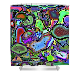 Eclectic Love Overflows Shower Curtain