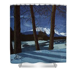 Eddy Park Moonlight Shower Curtain