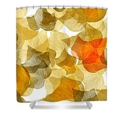 Edge Of Autumn Shower Curtain