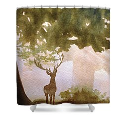 Edge Of The Forrest Shower Curtain by Marilyn Jacobson