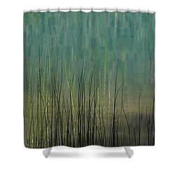 Edge Of The Lake - 365-262 Shower Curtain by Inge Riis McDonald