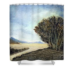 Edge Of The Mohave Shower Curtain