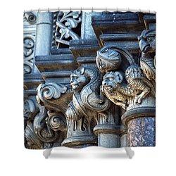 Shower Curtain featuring the photograph Edinburgh Gargoyles by Kenneth Campbell