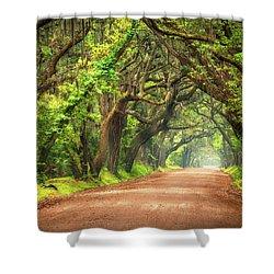 Edisto Island South Carolina Dirt Road Landscape Charleston Sc Shower Curtain