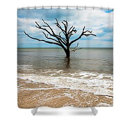 Edisto Island Tree Shower Curtain by Robert Loe
