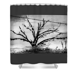 Eerie Reflections Shower Curtain