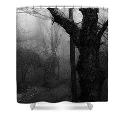 Eerie Stillness Shower Curtain