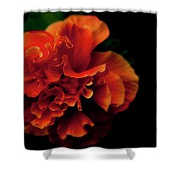 Shower Curtain featuring the photograph Efflorescence by Eric Christopher Jackson