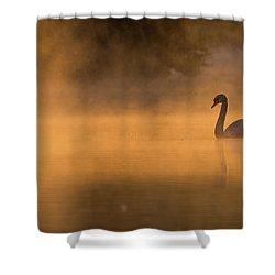 Effulgent Stratford Morning Air Shower Curtain