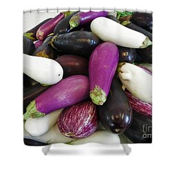 Eggplant Varieties Shower Curtain by Dee Flouton