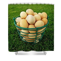Eggs In A Basket Shower Curtain