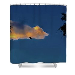 Egressing Egret Shower Curtain by DigiArt Diaries by Vicky B Fuller