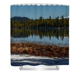 Shower Curtain featuring the photograph Egret At Lava Lake by Cat Connor