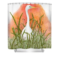 Shower Curtain featuring the painting Egret Color In Sunset by Peggy A Borel
