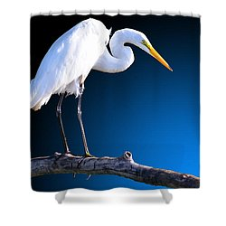 Egret Embrace Shower Curtain