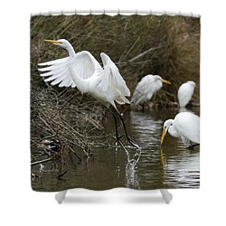 Shower Curtain featuring the photograph Egret Exit by George Randy Bass