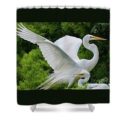 Egret Family Shower Curtain