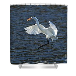 Egret Fishing Shower Curtain