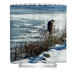Egret Frozen Lake Shower Curtain
