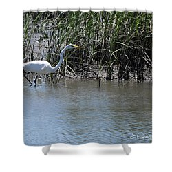 Egret 2 Shower Curtain