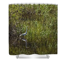 Egret Hunting In Reeds Shower Curtain