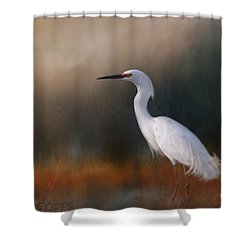 Egret In Field Shower Curtain by Kathy Russell