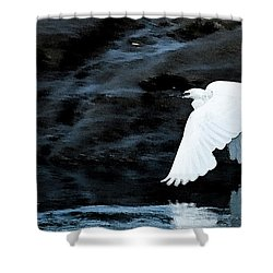 Egret In Flight Shower Curtain by Brian Roscorla