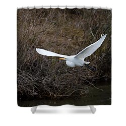 Shower Curtain featuring the photograph Egret In Flight by George Randy Bass