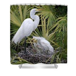 Egret Nest Shower Curtain