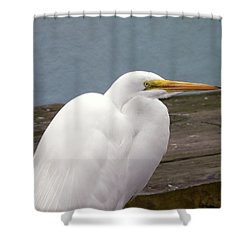 Egret On The Dock Shower Curtain by Al Powell Photography USA