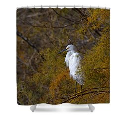 Egret Surrounded By Golden Leaves Shower Curtain by Ruth Jolly