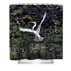 Egret X Shower Curtain by Gary Adkins