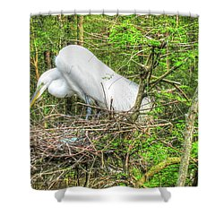 Egrets And Eggs Shower Curtain