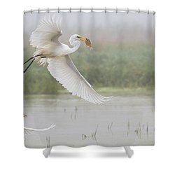 Shower Curtain featuring the photograph Egrets Fish by Kelly Marquardt