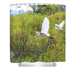 Egrets In Flight Shower Curtain