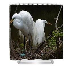 Egrets Shower Curtain