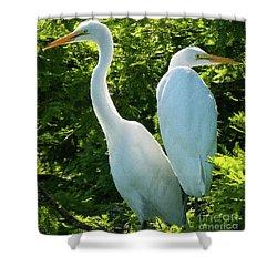 Egrets Sitting Around Shower Curtain