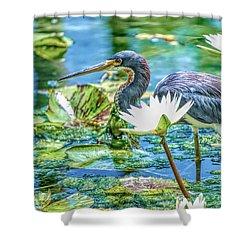 Egretta Tricolor Shower Curtain
